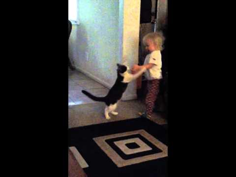 Austinn and kitty cat playing