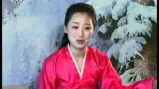 아동방송시간 위대한 령도자 김정일원수님의 어린시절 이야기  총쏘는 련습을 하시며 360p