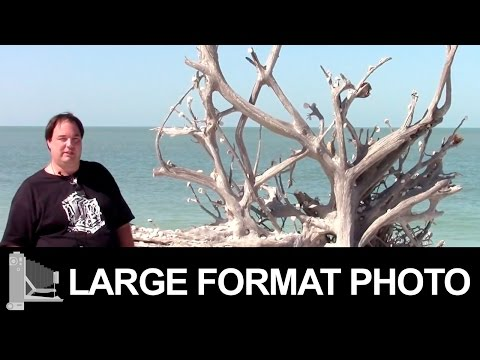Lovers Key State Park - Large Format Film Photography