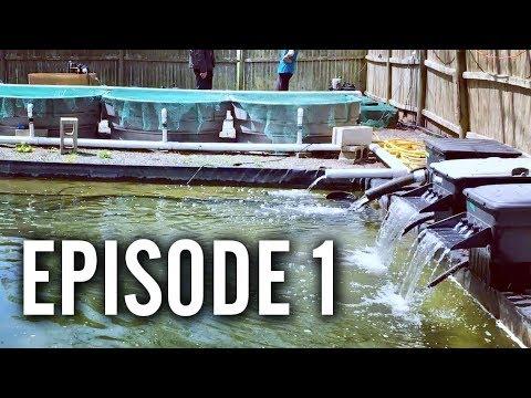 Pond Store Tours - Episode 1 (A Piece of Paradise, RI)