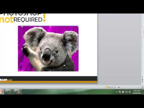 Microsoft Office 2010: The Background Removal tool