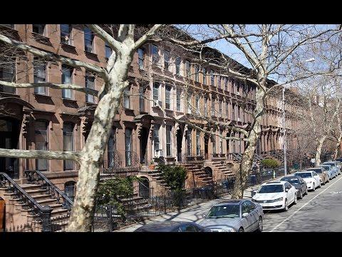 Exploring New York City - Brooklyn tour