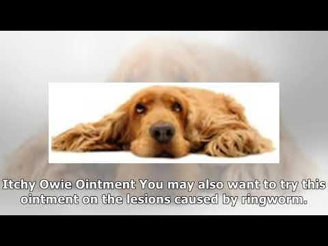 Natural Dog Ringworm Remedies