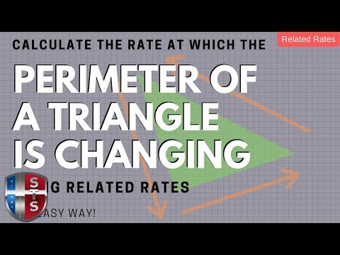 Calculus - Related Rates - Sliding Ladder - Triangle Perimeter Analytics