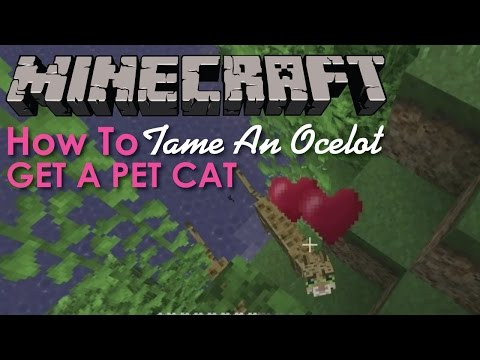 How to tame an Ocelot in Minecraft
