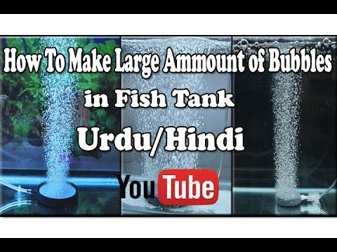 How To Make Large Amount of Bubbles in Fish Tank Urdu/Hindi