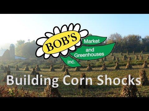 Building Corn Shocks