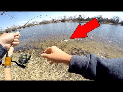 CATCH and COOK Super Clear Water Fish!!!