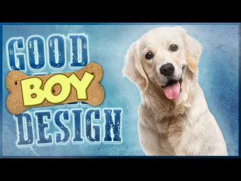 Good Boy Design - What Makes Dogs Great