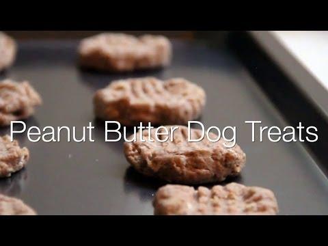 DIY Peanut Butter Dog Cookies - Cuteness.com