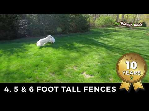 Stop your dog from digging under the fence