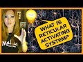 Reticular Activating System (How To Use It To Get What You Really Want)