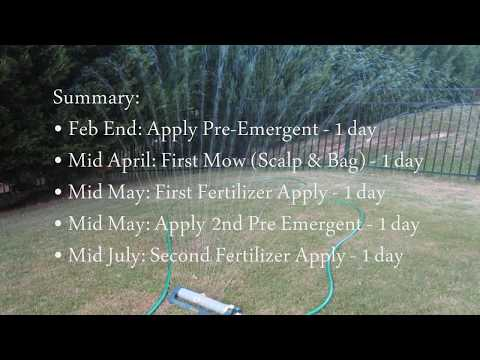 Bermuda Grass Minimum Maintenance & Expense for Beautiful Lawn