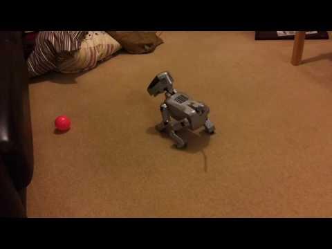 A Working AIBO 111 Robot Pet Autonomous Dog With Long Battery Life