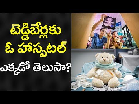 SHOCKING! Do You About Teddy Bear Hospital at Dubai? | Latest Updates | VTube Telugu