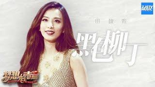 [ CLIP ]田馥甄《黑色柳丁》《梦想的声音》第2期 20161111 /浙江卫视官方HD/