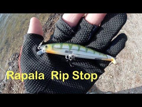 Trying the Rapala Rip Stop Jerkbait  - Bass, Crappie, & Pickerel - Long Island NY