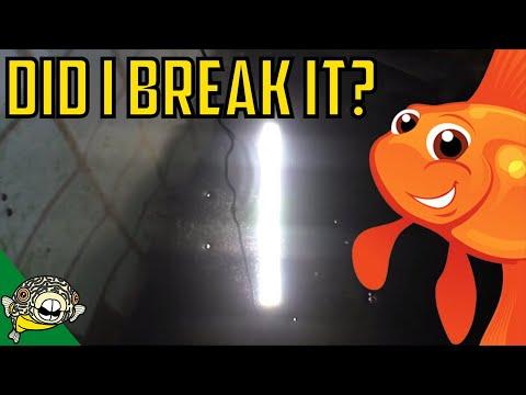 Did I break it? Fluval Fresh 2.0 Stress test! Aquasky Fluval LED PAR results as well.