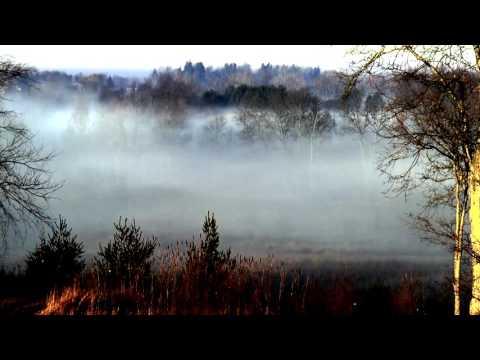 Nature Weaving a Blanket of Fog