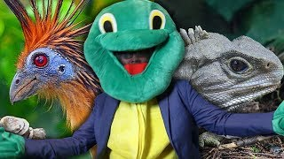 The Weirdest Living Animals - (With Dr. Lawrence Turtleman)