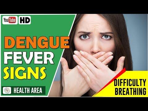 8 Warning Signs of Dengue Fever | Dengue Fever Symptoms