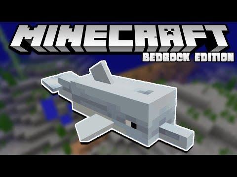 New Aquatic Update Features Stream!!   Minecraft Bedrock Edition