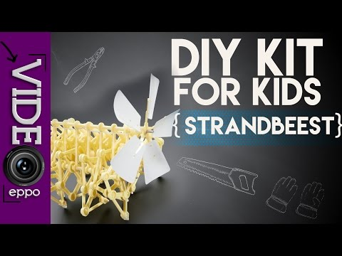 DIY STRANDBEEST KIT - ASSEMBLY GUIDE AND TEST