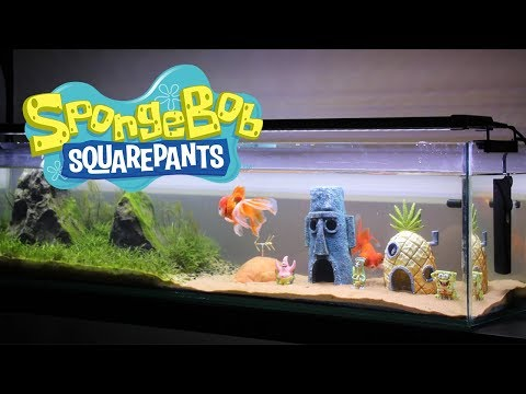 Building a SpongeBob Themed Aquarium (from scratch)