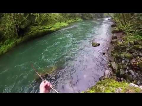 2016 Oregon Winter Steelhead Fishing(HD Available)