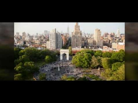 homeland security degree -  New York university