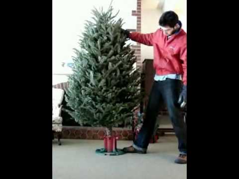 Christmas tree stand Instantaneous