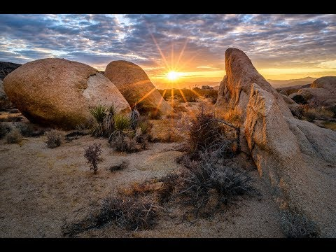 Digital Photography Techniques, Digital Cameras For Beginners, Camera For Landscape Photography