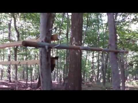 Salmon Ladder Ninja Warrior Training and Tutorial