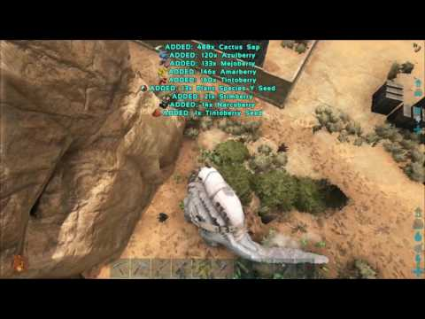 How to get Cactus Saps fast and easy - ARK Survival Evolved