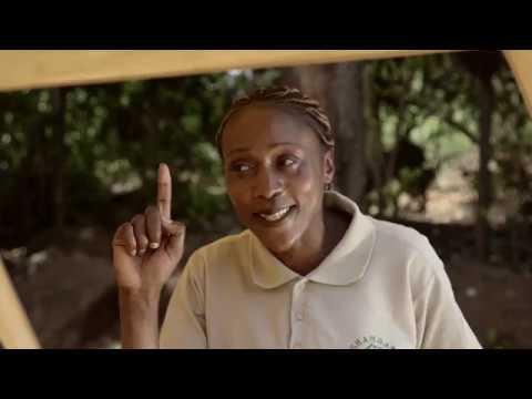 Shamba Shape Up Sn 08 - Ep 05 Rice Fertiliser, Water Melons, Dairy Cows (Swahili)