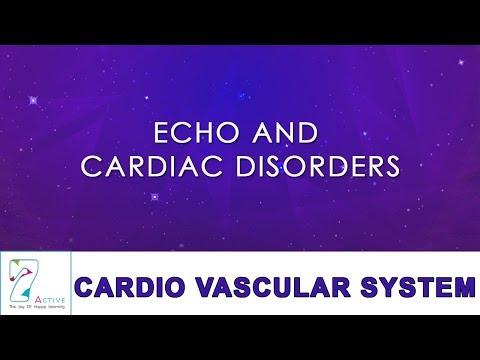 ECHO AND CARDIAC DISORDERS