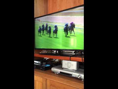 Funny Australian race call ahhhh yawning Melbourne Seymour horse racing