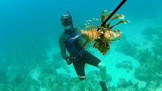 Spearfishing Poisonous Lionfish - Bahamas Part 1 (Ted