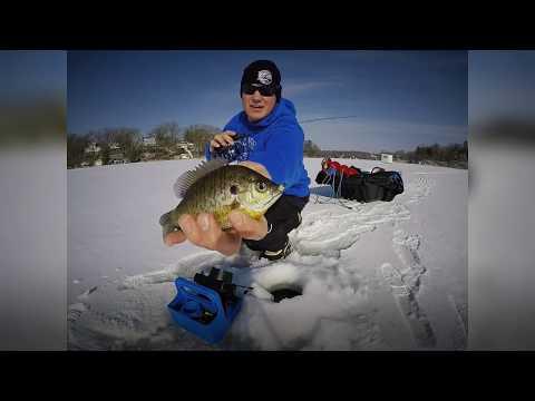 Bluegill Ice Fishing Tactics