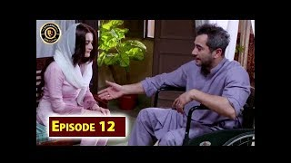 Baydardi Episode 12 - 25th June 2018 - ARY Digital [Subtitle