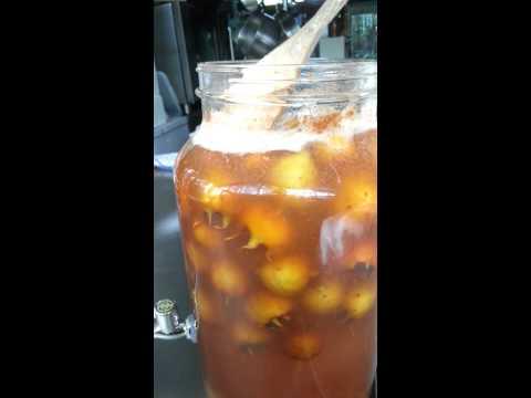 Wild fermented vinegar