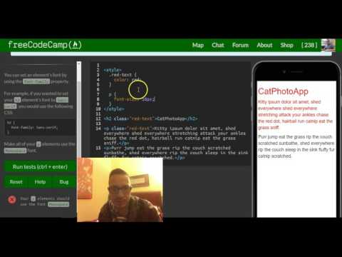 Set the Font Family of an Element, freeCodeCamp review html & css