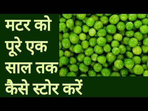 How to preserve green peas for whole year in Hindi | हरे मटार को पुरे एक साल तक कैसे स्टोर करे |