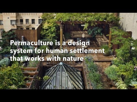 Benefits of Permaculture in under 2 minutes