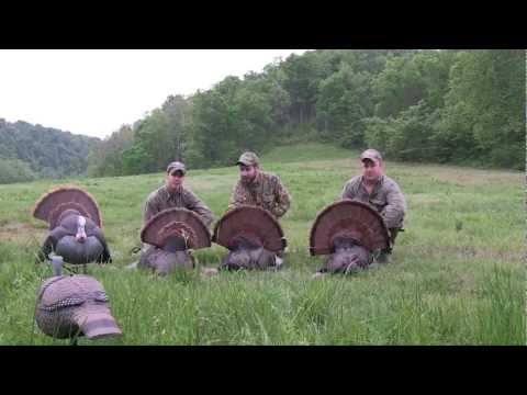 Arkansas Turkey Hunt