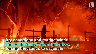 California Wildfire Spreads, Forcing Evacuation Of 50,000