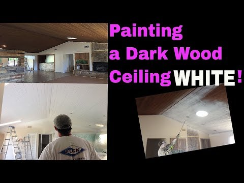 To Paint or Not to Paint Dark Wood Ceiling? How to paint a wood ceiling using Graco airless sprayer