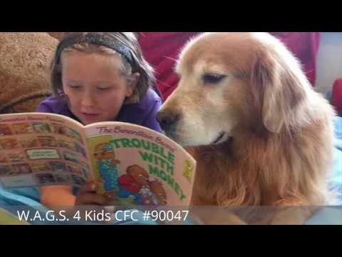 Combined Federal Campaign 2016 - W.A.G.S. 4 Kids CFC #90047