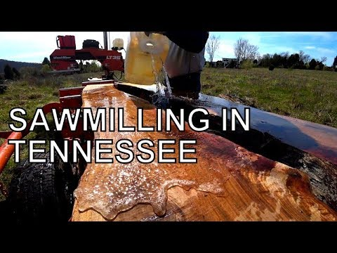 TURNING AN UGLY LOG INTO PRIZE SLABS ON THE WOOD-MIZER,