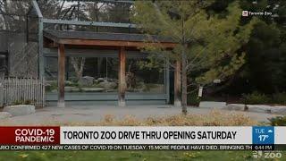 Toronto Zoo to open drive-in service Saturday